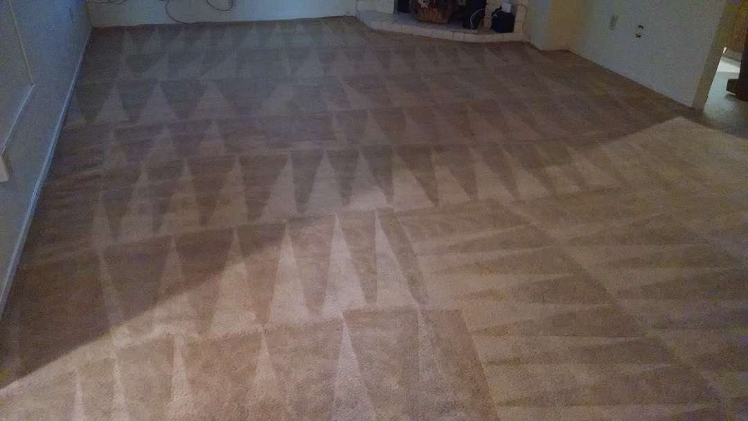 Pet stain odor removal bakersfield all pro carpet for Flooring bakersfield