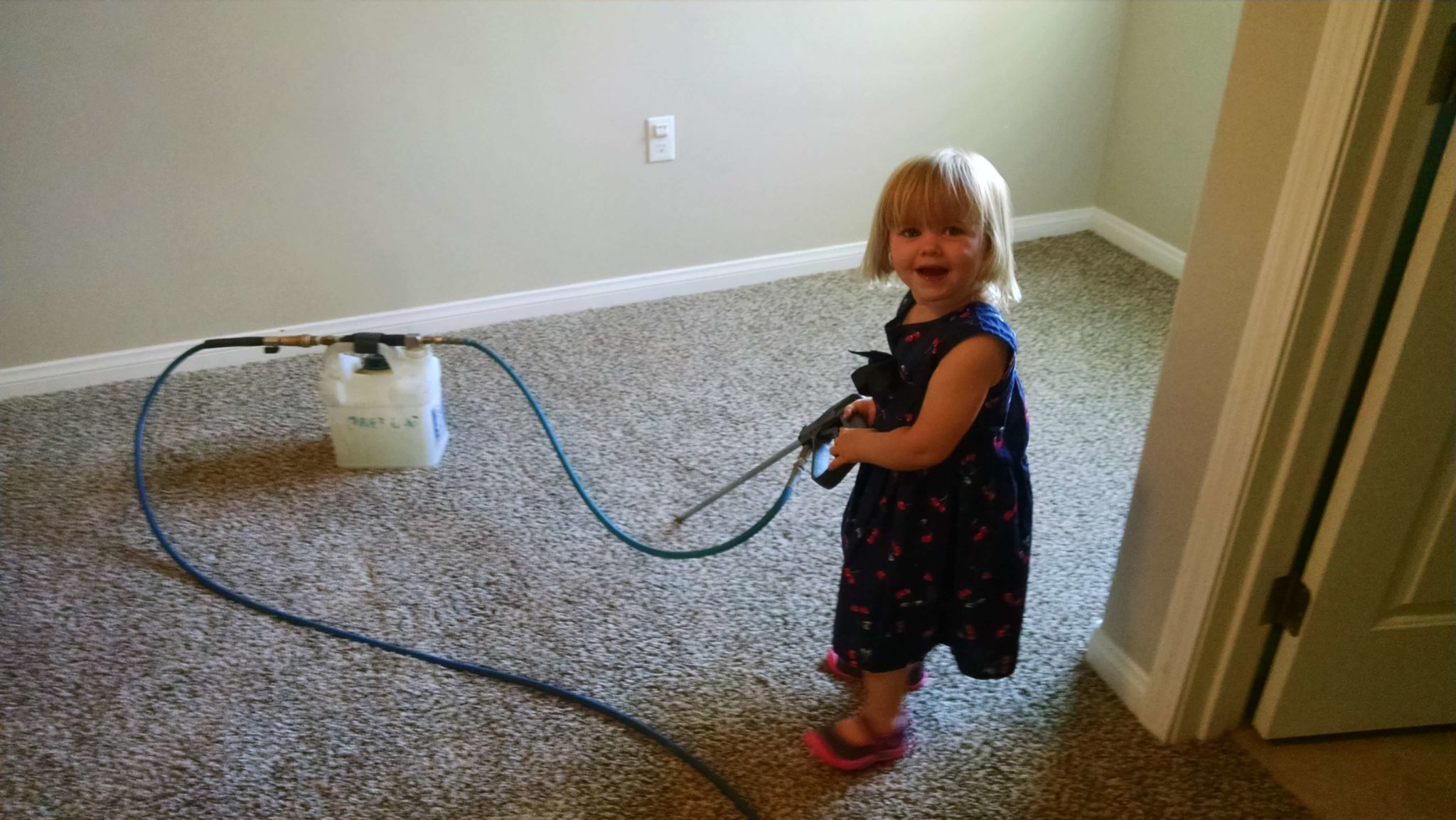 Carpet Cleaning Bakersfield All Pro Carpet Care