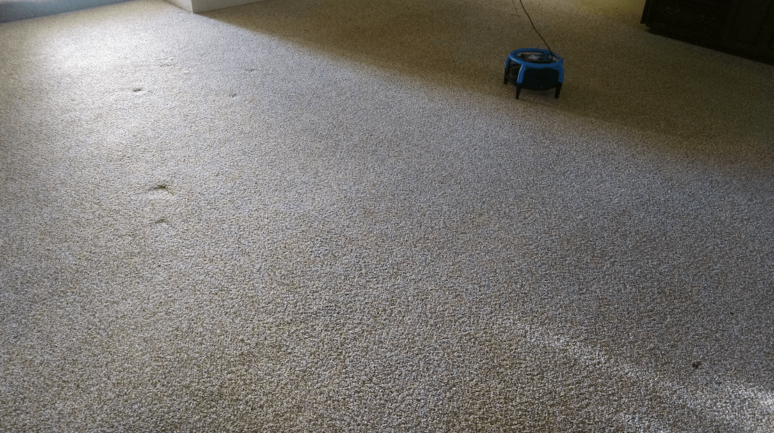 Carpet Cleaning Bakersfield All Pro Carpet Tile Care