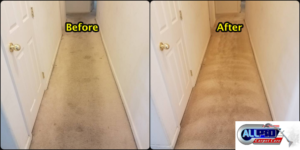 Carpet Cleaning Prices Bakersfield