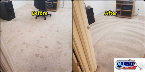Best Carpet Cleaning Companies Bakersfield