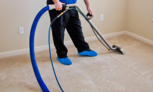 Best Carpet Cleaning Company (1)